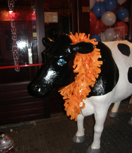 и пак крава, с оранжево
