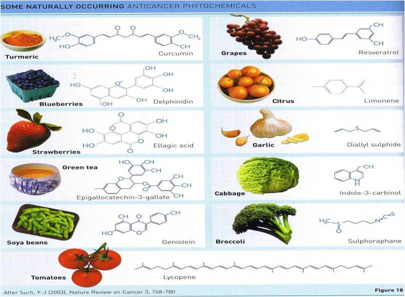 Anti Cancer compound in fruits