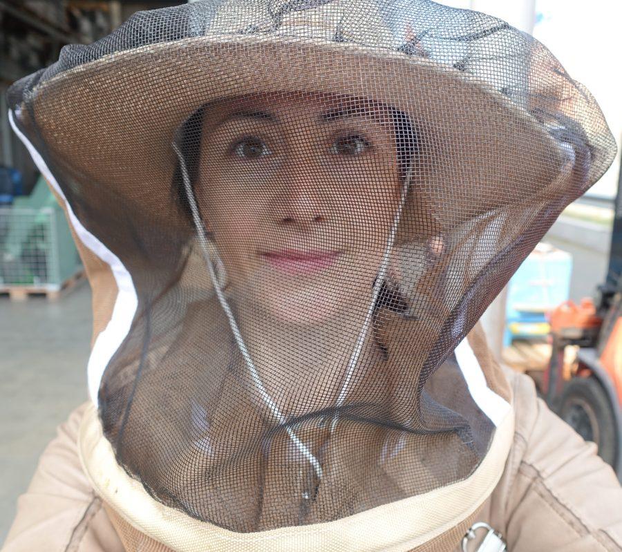 BiljanaLowndes-city_bees